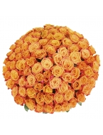 200 Long Stem Orange Roses