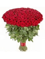 100 Premium Red Roses - $89.99 with FREE SHIPPING