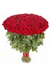 500 Long Stem Red Roses