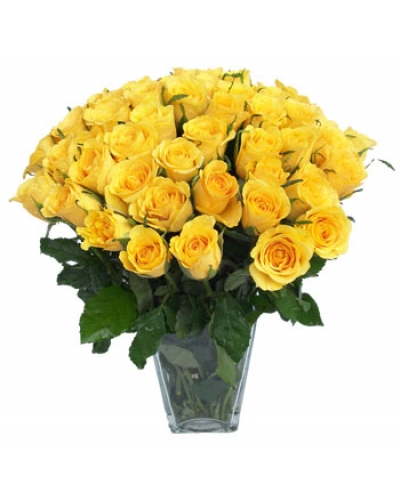 100 long stem yellow roses mightylinksfo