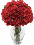50 Long Stemmed Red Roses with FREE Vase