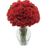 25  Red Lush Long-Stemmed Roses