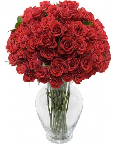 50 Long Stem Red Rose Bouquet With Free Vase