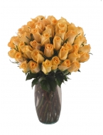 36  Long Stem Orange Roses with FREE Vase