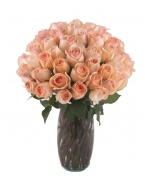 36 Long Stem Peach Roses