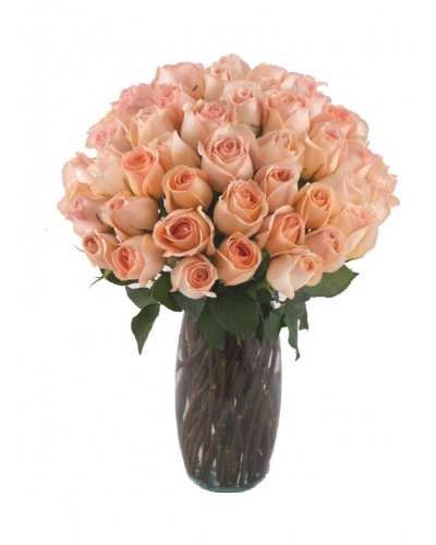 36 Long Stem Peach Roses With Free Vase