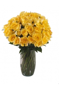 36  Long Stem Yellow Roses with FREE Vase