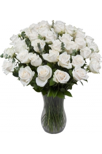 36 Long Stem White Roses