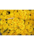 400 Long Stem Yellow Roses