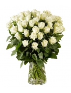 50 Long Stemmed White Roses with FREE Vase