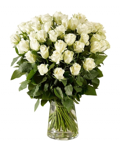 50 Long Stem White Rose Bouquet With Free Vase
