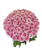 50 Long Stem Pink Rose Bouquet