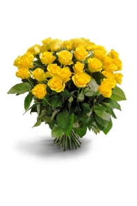 50 Long Stem Yellow Roses