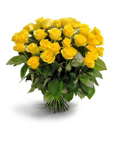 50 long stem yellow rose bouquet mightylinksfo