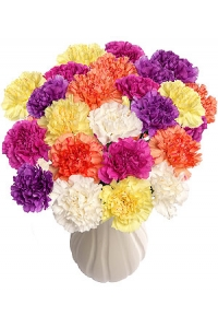 150 Assorted Carnations