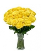 25 Long Stem Yellow Roses with FREE Vase