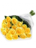 Our Yellow Roses