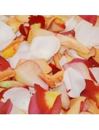 2000 Assorted Rose Petals