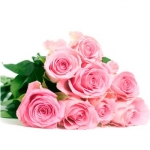 25 Pink Rose Bouquet with FREE VASE