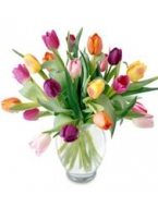 30 Rainbow Tulips Bouquet