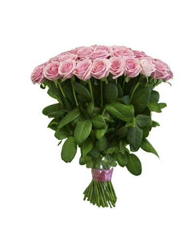 50 Long Stem Pink Rose Bouquet