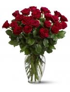 25  Red Lush Long-Stemmed Roses